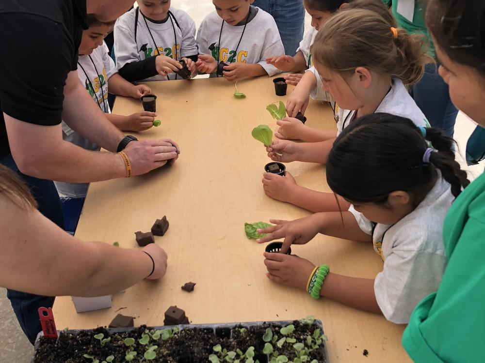 children learning plant science